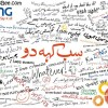 Zong's Campaign: What Do You Think?