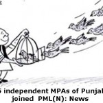 25 Independent MPAs of Punjab joined PML(N)