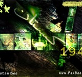 pak-independence-day-wallpaper-14aug-10